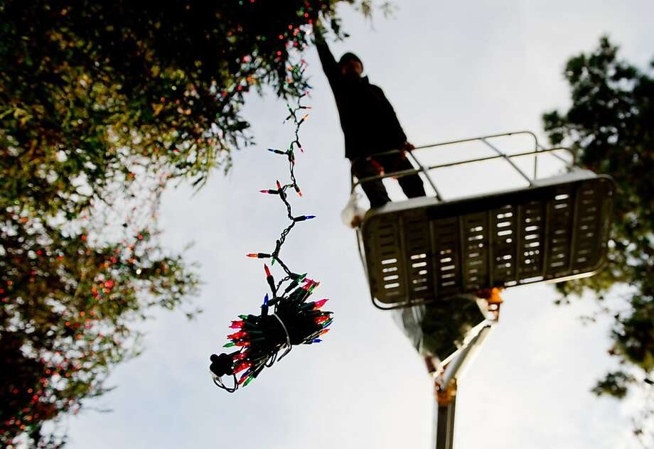 Kelly Green puts up lights last November in advance of Carmel-by-the-Sea's 2012 holiday tree lighting. Photo: Chad Ziemendorf, Special To The Chronicle