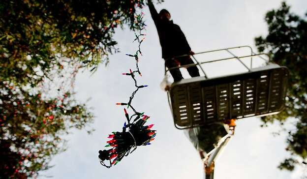 Kelly Green decorates the main tree in downtown Carmel-by-the-Sea from a basket approximately 25 feet above street level with hundreds of thousands of colored lights in anticipation of the town's tree lighting ceremony this coming Friday in Carmel-by-the-Sea, Calif., on November 30, 2010.  Green has been the town's main holiday tree decorator for the past 3 years.