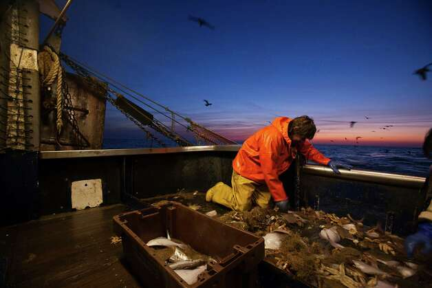 seattle 39 s hottest jobs slowest careers ForSeattle Fishing Jobs