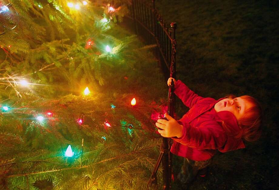 OOH! Christmas tree! As the lights of the Douglas County Courthouse tree are switched on for the first time, the festive spectacle nearly topples 2-year-old Lucy Fry in Roseburg, Ore. Photo: Michael Sullivan, Associated Press