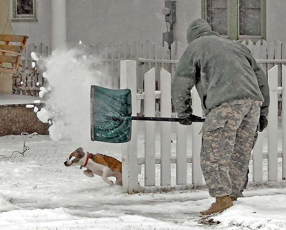 David 'DJ' Rohrich plays with dog Trixie who tries to outrun a shovel of snow on Tuesday, Dec. 3, 2013. Rohrich was shoveling snow outside his Bismarck home but the playful dog had other plans and kept interrupting his efforts. (AP Photo/The Tribune, Tom Stromme) Photo: Tom Stromme, Associated Press