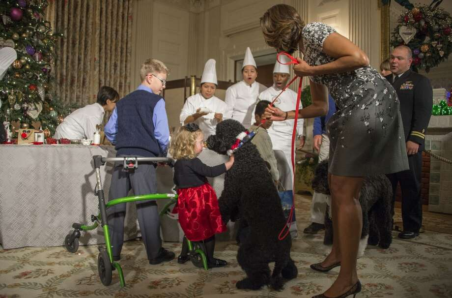 First Lady Michelle Obama pulls on her dog Sunny as two-year-old Ashtyn Gardner reacts during the White House Christmas decorations viewing at the White House in Washington, DC, December 4, 2013. Photo: JIM WATSON, AFP/Getty Images