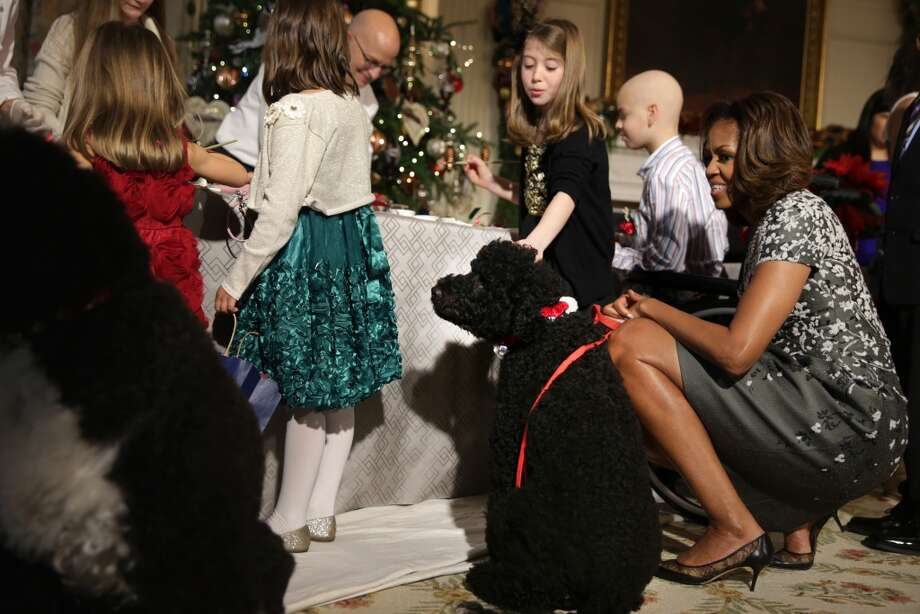 U.S. first lady Michelle Obama greets military children with her dog Sunny at the State Dining Room of the White House during an event to preview the 2013 holiday decorations December 4, 2013 in Washington, DC. The first lady hosted military families for the first viewing of the decorations and demonstrating holiday crafts and treats to military children. Photo: Alex Wong, Getty Images
