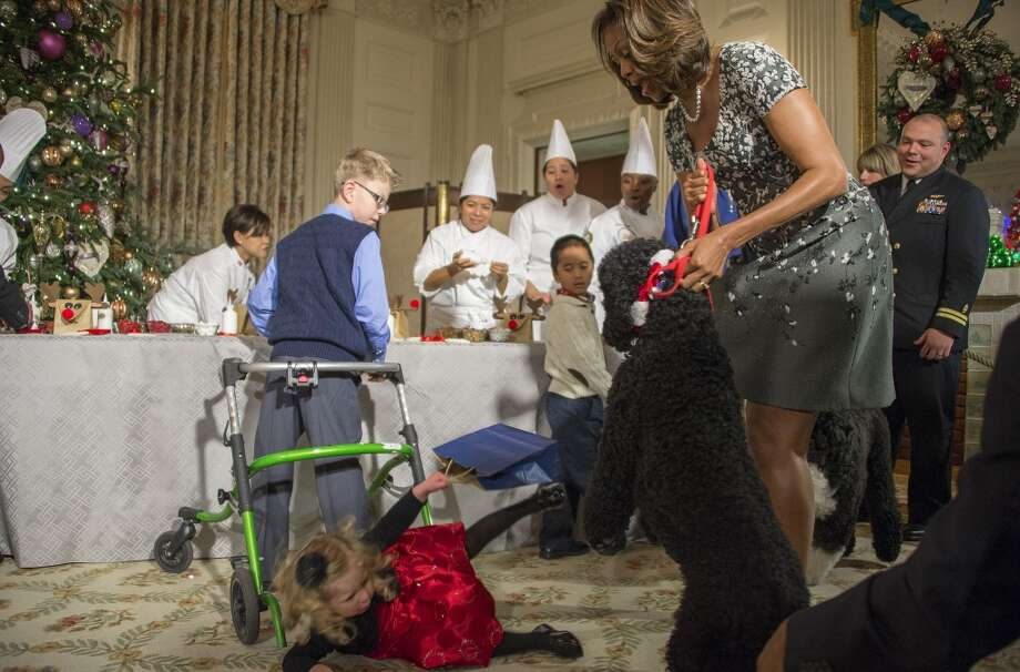 First Lady Michelle Obama pulls on her dog Sunny as two-year-old Ashtyn Gardner takes a tumble during the White House Christmas decorations viewing at the White House in Washington, DC, December 4, 2013. Photo: JIM WATSON, AFP/Getty Images