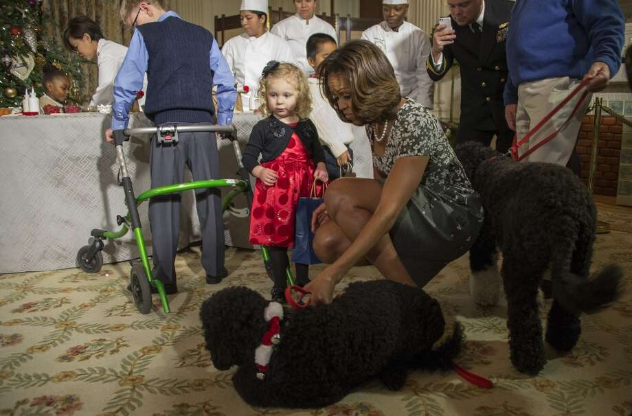 First Lady Michelle Obama pulls on her dog Sunny as two-year-old Ashtyn Gardner recovers after falling during the White House Christmas decorations viewing at the White House in Washington, DC, December 4, 2013. Photo: JIM WATSON, AFP/Getty Images