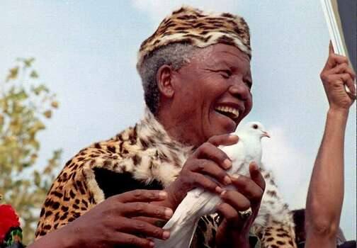 African National Congress President Nelson Mandela, in leopard skin, releases a white dove for peace at a rally to commemorate 34th anniversary of the massacre of 69 demonstrators by the police in Sharpville 21 March. Mandela praised Judge Richard Goldstone whose commissioner of inquiry implicated police generals in the gun-running to the Zulu-based Inkatha Freedom Party. Photo: Getty Images