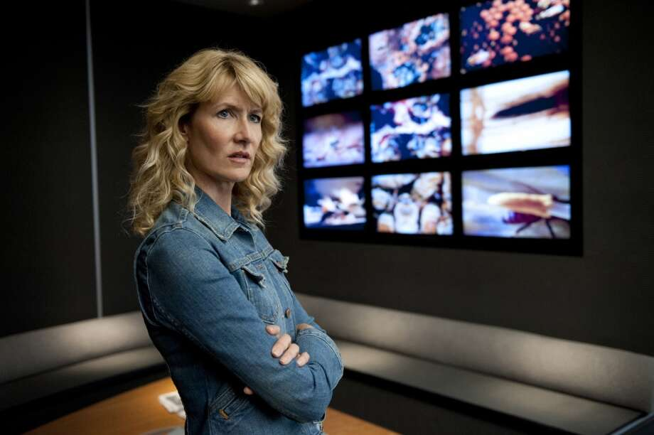 ENLIGHTENED: HBO, 2011-2013