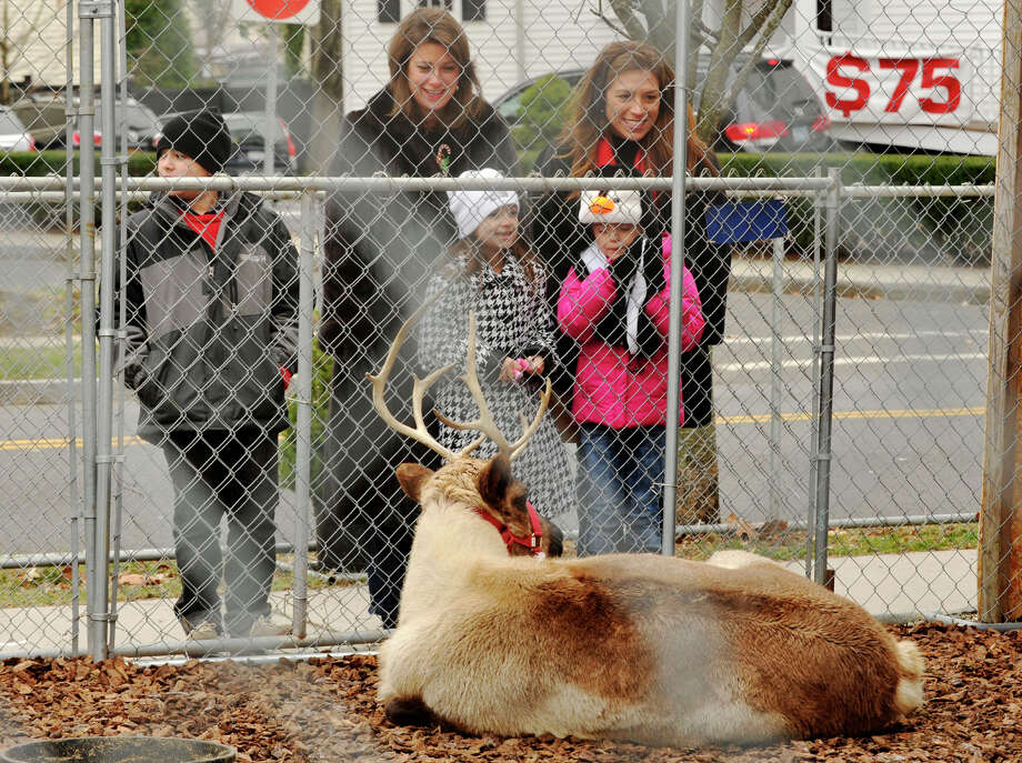 Andrew Zapata, left, and his sister, Taylor, center, along with her friend Olivia Pason look at reindeer on display at McArdle's Florist and Garden Center with their mothers Rosemary Pason, top right, and Kim Zapata during the annual Greenwich Holiday Stroll in downtown Greenwich, Conn., on Sunday, Dec. 8, 2013. Photo: Jason Rearick / Stamford Advocate