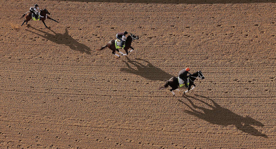 Kentucky Derby hopefuls Falling Sky, left to right, Charming Kitten and Black Onyx go for a morning workout at Churchill Downs Wednesday, May 1, 2013, in Louisville, Ky. Photo: Charlie Riedel, ASSOCIATED PRESS / AP2013