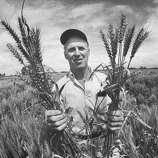 "Biologist, Dr. Norman Borlaug was awarded the Nobel Peace Prize in 1970 for his contributions towards the ""Green Revolution."""