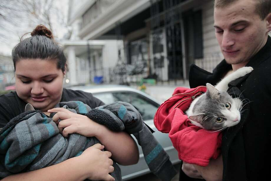 Give or take a couple of lives: Amelia Luciano bundles Lola as Brett Lukasiewicz grapples with a wriggling Sully after the cats were routed from their home by an early morning fire in Buffalo, N.Y. The felines appeared to be unharmed after firefighters rescued them from their apartment. Photo: Derek Gee, Associated Press