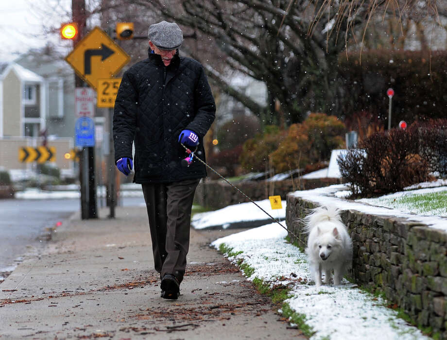 Larry Greenberg, of Milford, walks his dog Lola along Merwin Avenue in Milford, Conn. on Tuesday December 10, 2013. Photo: Christian Abraham / Connecticut Post