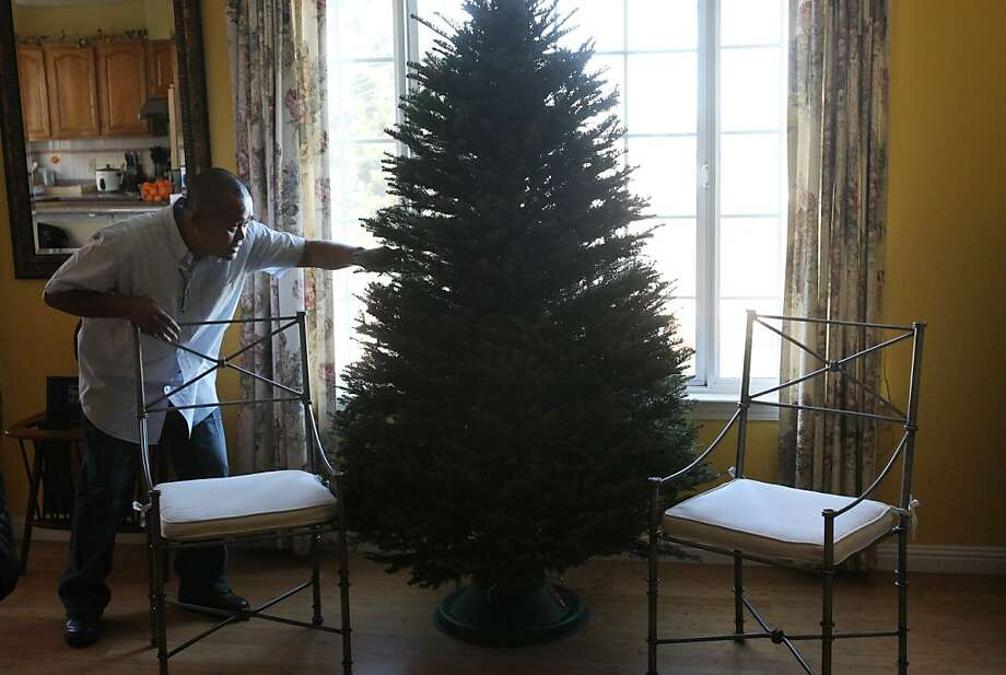 Alvin Bautista adjusts their new Christmas tree, currently devoid of lights or ornaments until they can buy them December 7, 2013 at Bautista's home in San Francisco, Calif. Bautista found their home with the help of a veteran's program and a section 8 housing voucher after looking at over 75 houses, he and his children moved into their new home in February. Bautista currently teaches preschool for the Salvation Army and coaches 3rd grade basketball. Photo: Leah Millis, The Chronicle