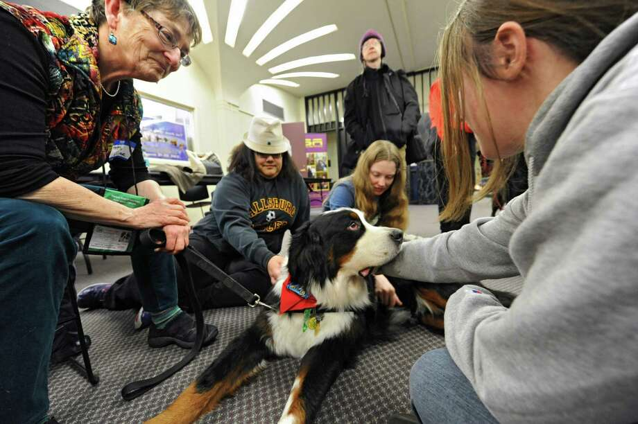 From left, Happy Scherer of Delmar shares the love of her Bernese Mountain Dog Oliver with UAlbany students Violeta Loarca of Fallsburg, Larissa Ryan of Copperstown, NY, Morgan O'Connell of Hardwick, VT, standing, and Emily O'Connor of Poughkeepsie in the Campus Center at UAlbany on Wednesday, Dec. 11, 2013 in Albany, N.Y. The therapy dogs were brought in to help relieve students of the stress from final exams. Cookies were also handed out by the Division of Student Success, the Spirit Street Team, students and faculty. (Lori Van Buren / Times Union) Photo: Lori Van Buren / 00024999A