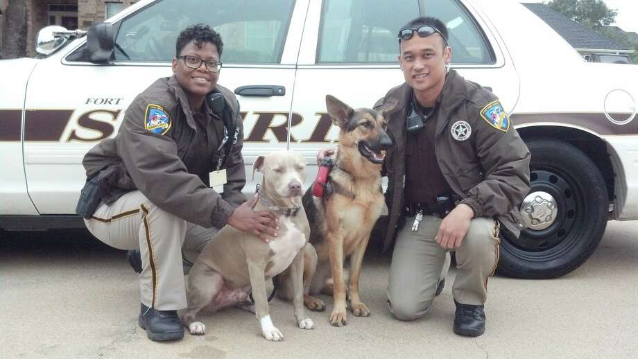 Deputy Tamica Humphrey, left, and Deputy David Connolly with dogs they reunited with their owner after the canines were found wandering in Katy Dec. 5. Photo: FBCOSO