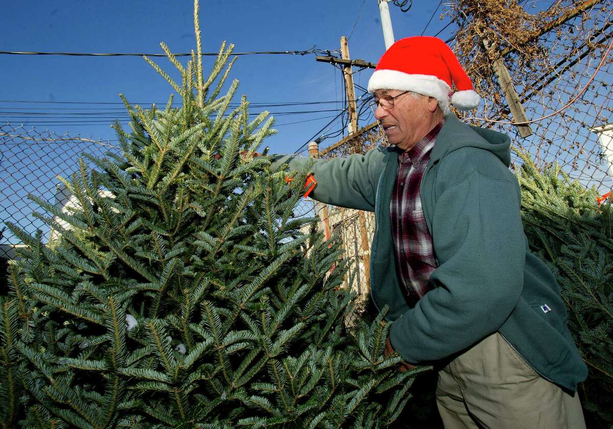 Joseph Galluzzo helps customers choose a Christmas tree at Joe G Nursery in Stamford, Conn., on Thursday, December 12, 2013. Galluzzo said the height restriction in the Glenbrook Village Commercial District has limited the value of his property and has prevented him from selling.
