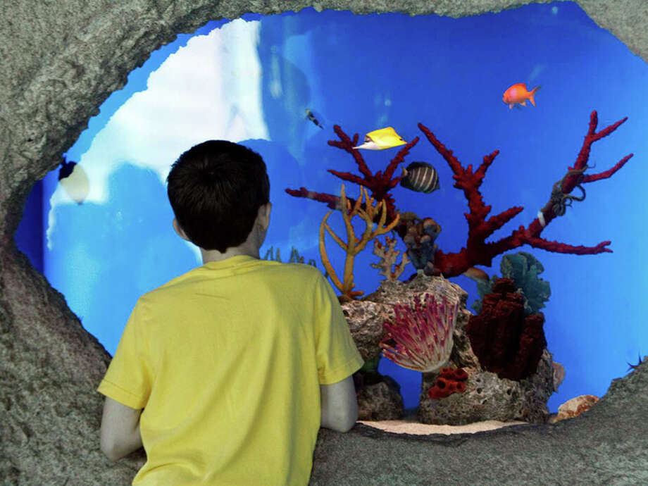 Downtown Aquarium. Photo: James Nielsen, Chronicle / © 2012 Houston Chronicle