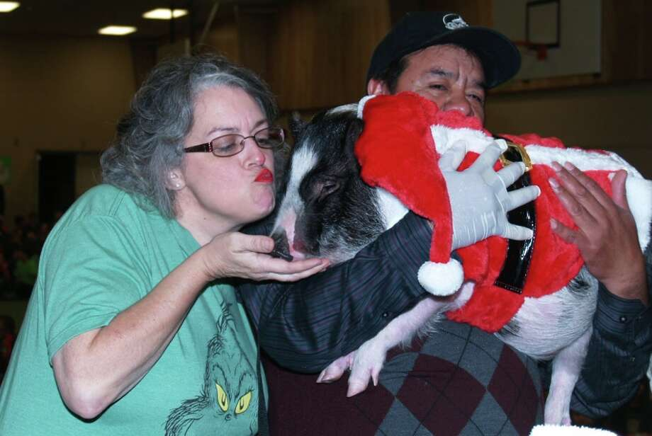 "Little Cypress second grade teacher Tammy Snoddy kisses a pig, a privilege she ""won"" through a PTO Fall Carnival fund-raising contest. Photo: Courtesy Sherry Combs"
