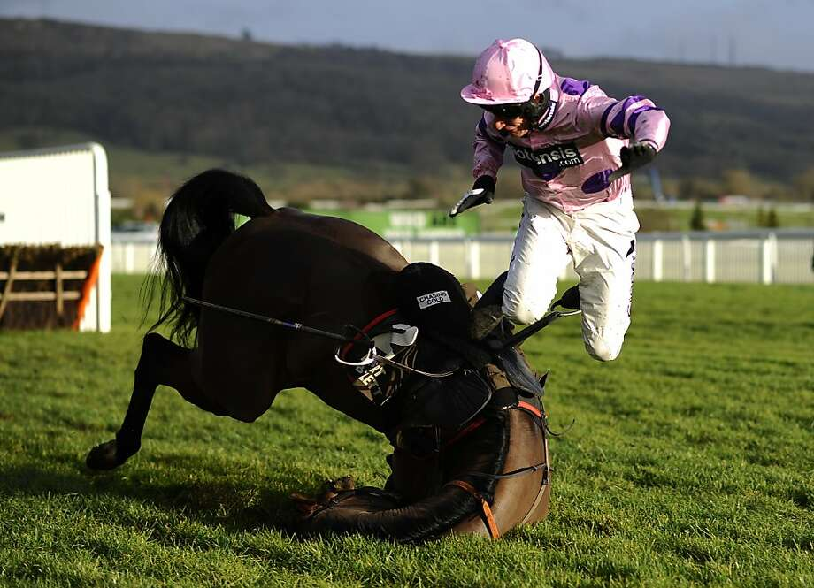 Falling Roque zone:Daryl Jacob flies off Saint Roque as the horse stumbles in the Albert Bartlett Novices' Hurdle Race 
