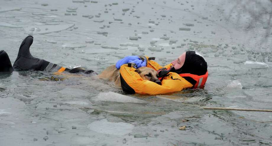 Lt. Jesse Marx of the German Township fire department holds tightly to Bronx, a German shepherd mix owned by Frank and Linda Redmond, as members of the German and Perry Township fire departments help pull them to the shore of an icy pond after the dog fell through, in Evansville, Ind., on Saturday, Dec. 14, 2013. Photo: Jason Clark, AP / The Evansville Courier & Press