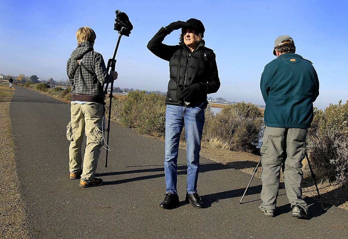 Mary Krentz (center) looks to the south as the bird counters begin early Sunday December 15, 2013 in Oakland, Calif. The annual Audubon bird count is underway in the East Bay and began at the Arrowhead Marsh in the Martin Luther King recreation area.