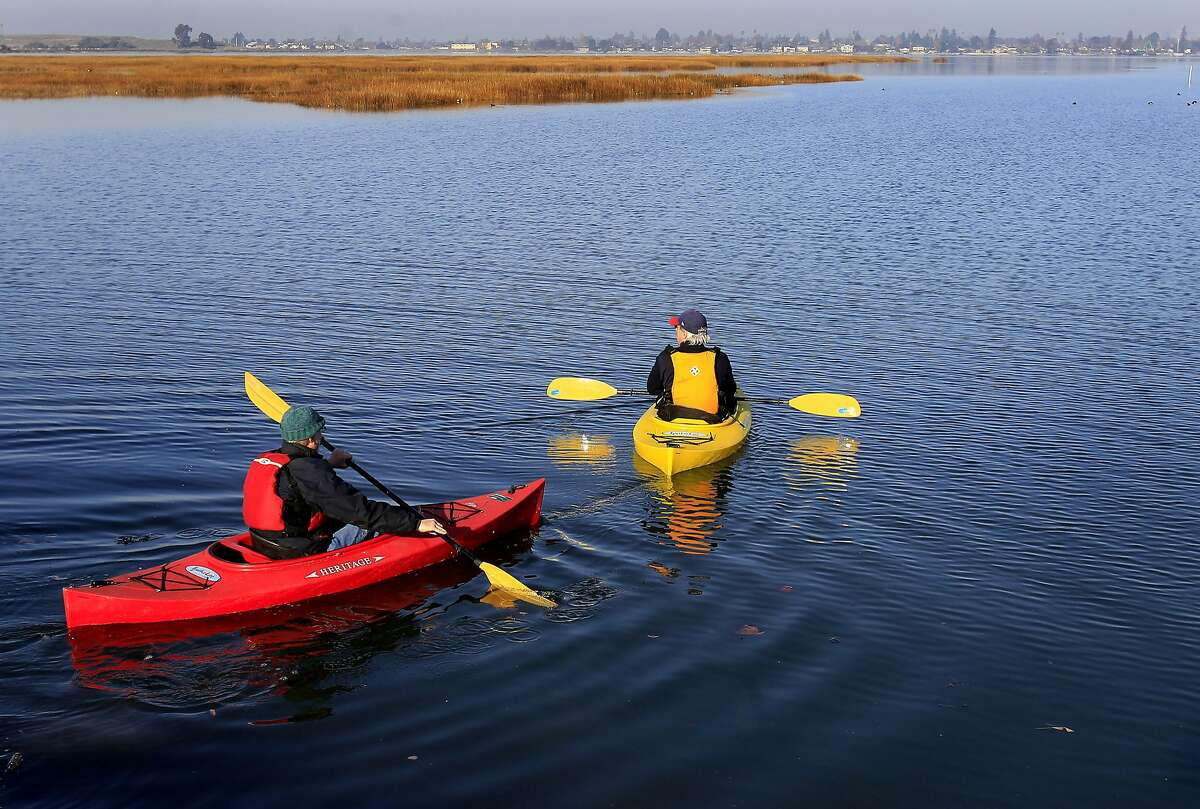 Chris Beatty (right) and David Rice take off in kayaks to better count the species in the brackish marsh Sunday December 15, 2013 in Oakland, Calif. The annual Audubon bird count is underway in the East Bay and began at the Arrowhead Marsh in the Martin Luther King recreation area.