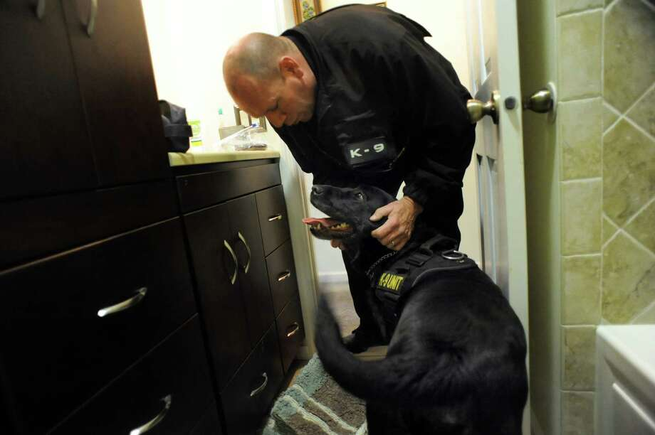 After searching a bathroom for drugs, David Harrington of Specialized K9 Detection Service rewards his Labrador retriever Willy  on Wednesday, Dec. 11, 2013, in Colonie, N.Y. (Cindy Schultz / Times Union) Photo: Cindy Schultz / 00024984A