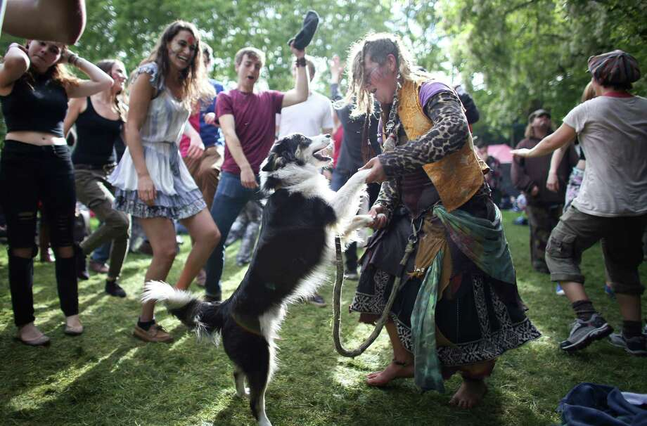 May 26, 2013 — Jennaveave Edmondson dances with her pup, Jedi Master, as they listen to tunes from the band Alder Street during the Northwest Folklife Festival at the Seattle Center. Photo: JOSHUA TRUJILLO, SEATTLEPI.COM / SEATTLEPI.COM