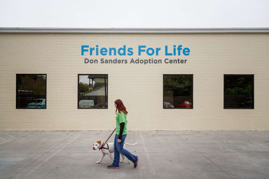 Angie Drach walks a bulldog mix named Lewis outside the Friends for Life, Don Sanders Adoption Center, Dec. 11, 2013, in Houston.  The building is one of several real estate developments that are finalists in the Urban Land Institutes's 2013 Development of Distinction Awards. Photo: Michael Paulsen, Houston Chronicle