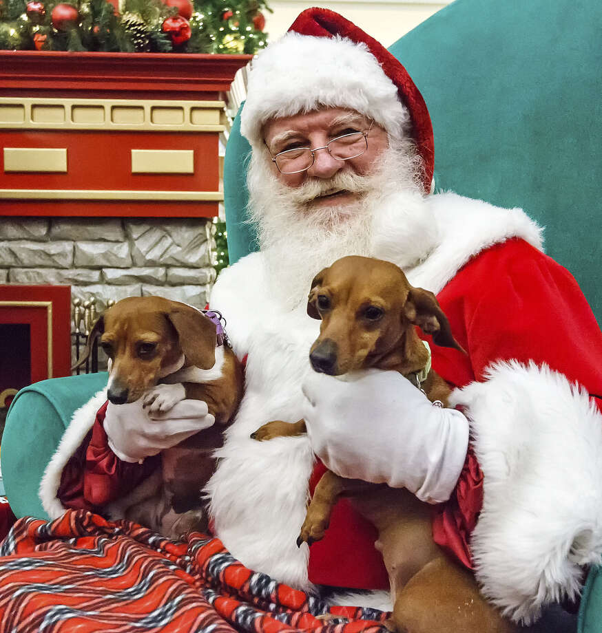 Santa visits with Sandy and Daisey, Morgan King's dachshunds, at North Star Mall. Give a gift certificate for adoption rather than the pet itself, advocates say. Photo: Marvin Pfeiffer / Southside Reporter / Prime Time Newspapers 2012