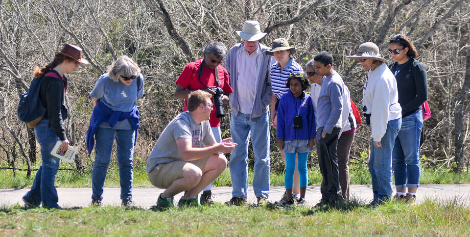 Government Canyon State Natural Area guide Patrick Cunningham talks about blossoming wildflowers while conducting a Wildflower Walk at the park earlier this year. Photo: Robin Jerstad, For The Express-News / San Antonio Express-News