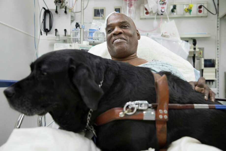 Cecil Williams smiles as he pets his guide dog Orlando in his hospital bed following a fall onto subway tracks from the platform at 145th Street, Tuesday, Dec. 17, 2013, in New York. The blind 61-year-old Williams says he fainted while holding onto his black labrador who tried to save him from falling. Both escaped without serious injury. (AP Photo/John Minchillo) Photo: John Minchillo, FRE / FR170537 AP
