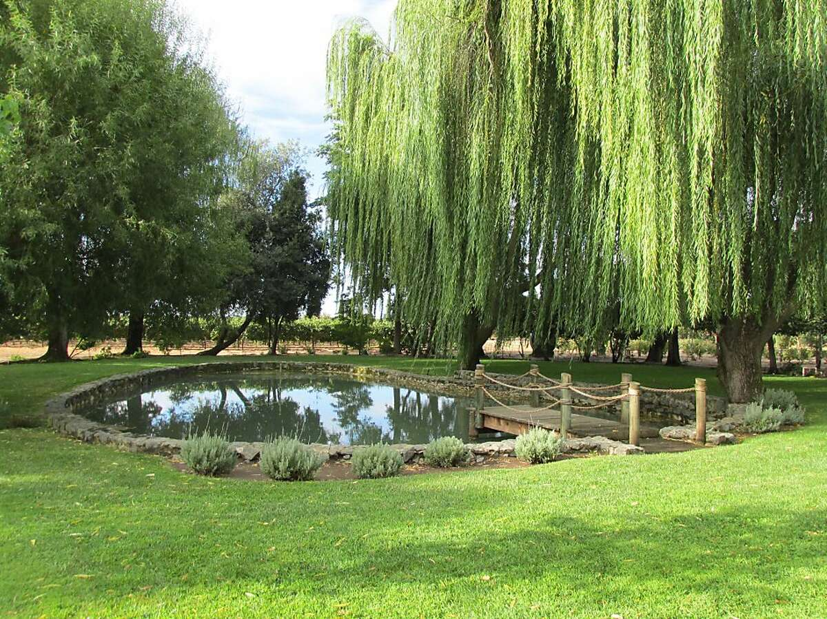 Seventh generation farmer and Mettler Family Vineyards owner Larry Mettler manages over 800 acres of Lodi vineyards.