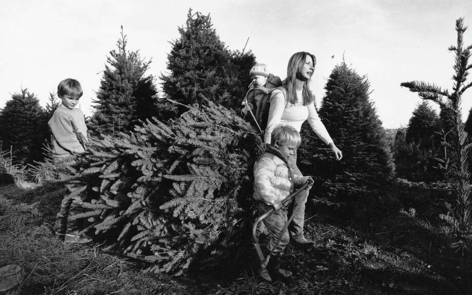 Cutting your own Christmas tree and letting your kid hold the saw is always fun. (Laura McClure carries a noble fir she and her kids cut at the Ebey Island Tree Farm east of Everett on Dec. 6, 1988) Photo: -