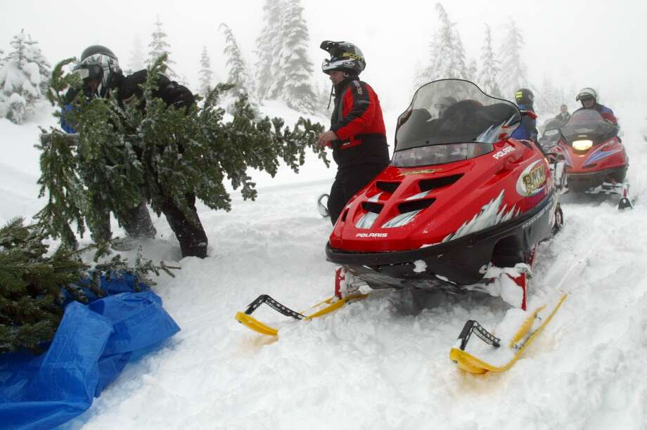 Or you can take your snowmobile to get your tree. (Elwood Hunt, left, and John Lierman load up a Christmas tree on Dec. 7, 2003 in the Cascade Mountains) Photo: JOSHUA TRUJILLO, - / SEATTLE POST-INTELLIGENCER
