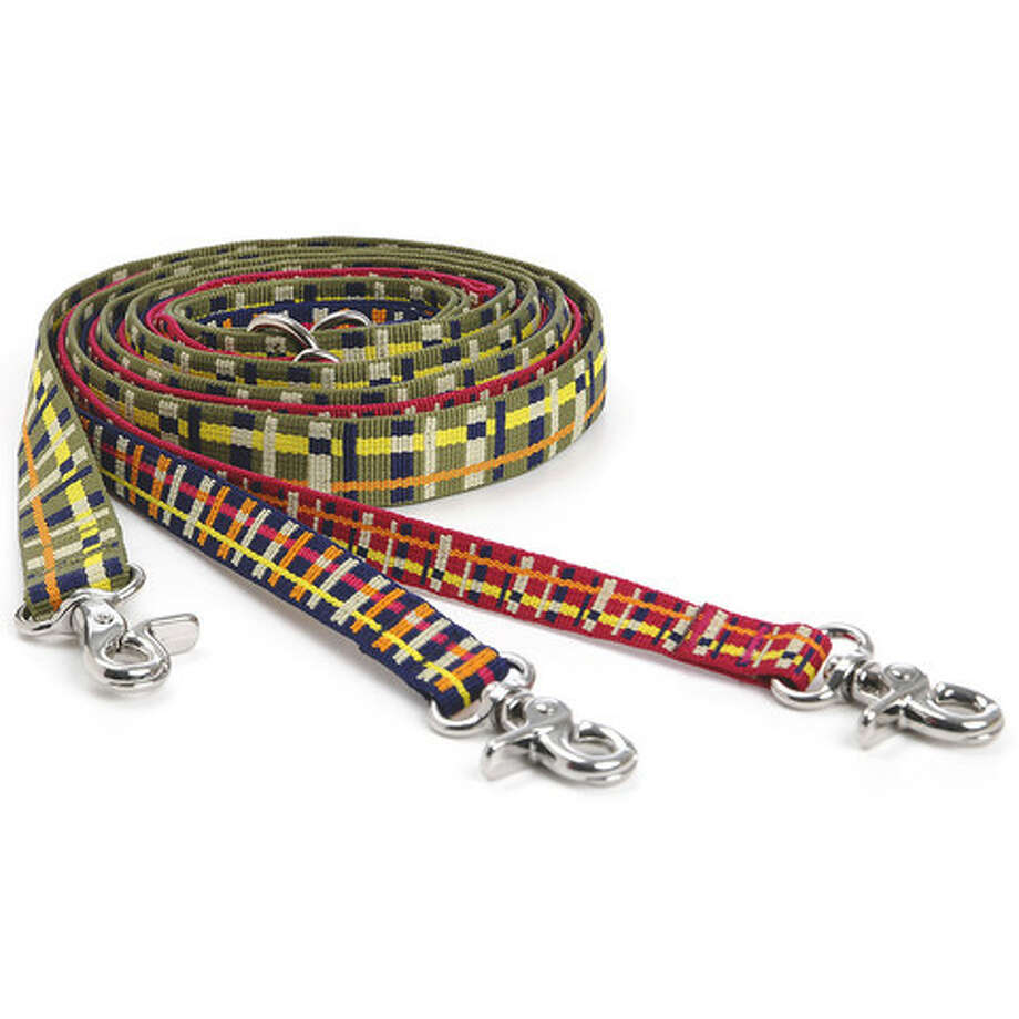 Give a stylish plaid dog leash from Waggo, priced at $20. Photo: Waggo.com