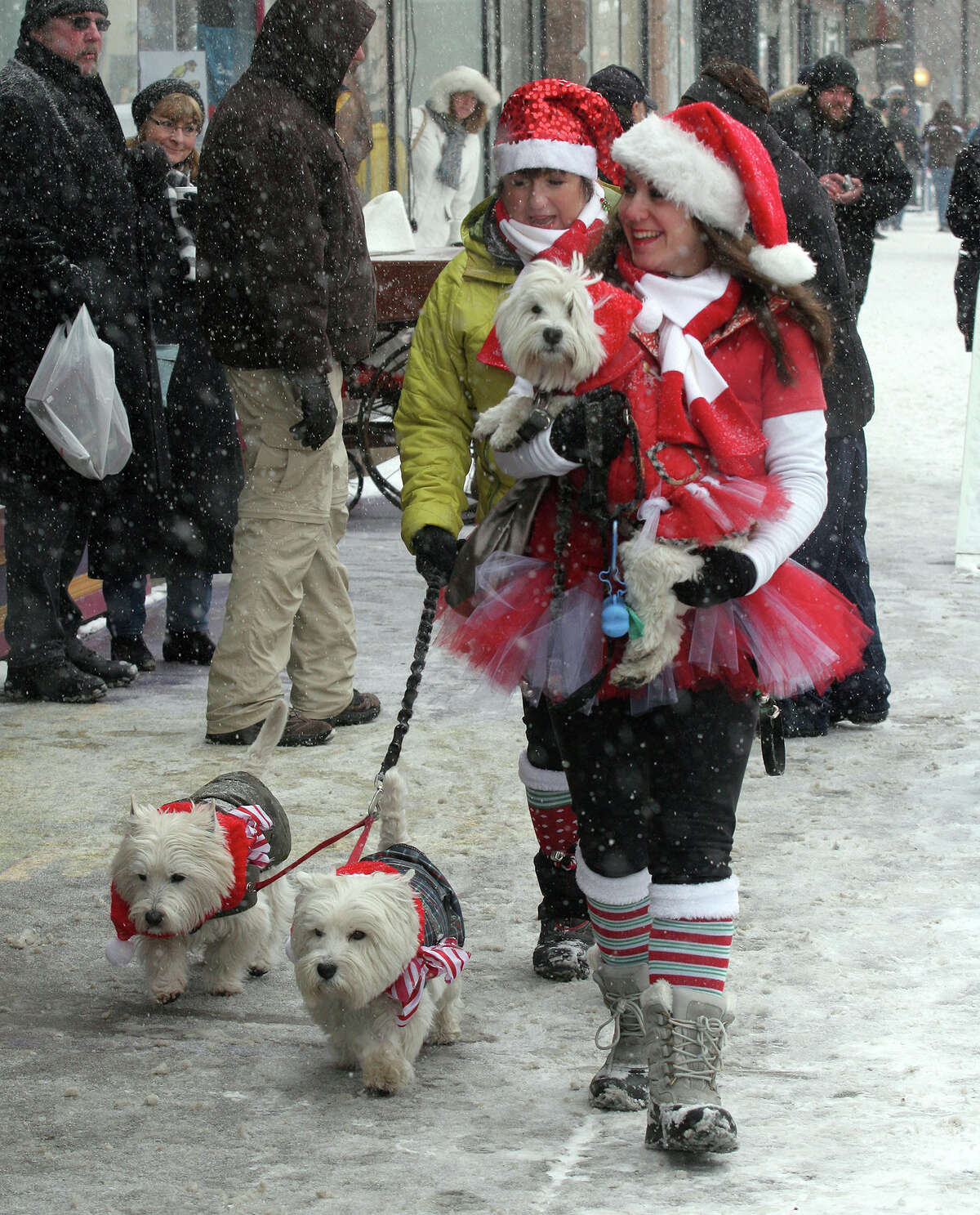 """In this Dec. 14, 2013 photo, Janet Lunig of Providence, R.I., left, and Elana Awer browse through downtown Seneca Falls, N.Y., with their dogs Linus, Hobbs and Juliana, during the annual weekend festival honoring the classic movie """"It's a Wonderful Life"""". The village is thought to be the inspiration for the movie. This cannot be proven. But it has not stopped locals from celebrating the beloved Frank Capra movie every December. (AP Photo/The Times, Spencer Tulis) ORG XMIT: NYGEN102"""