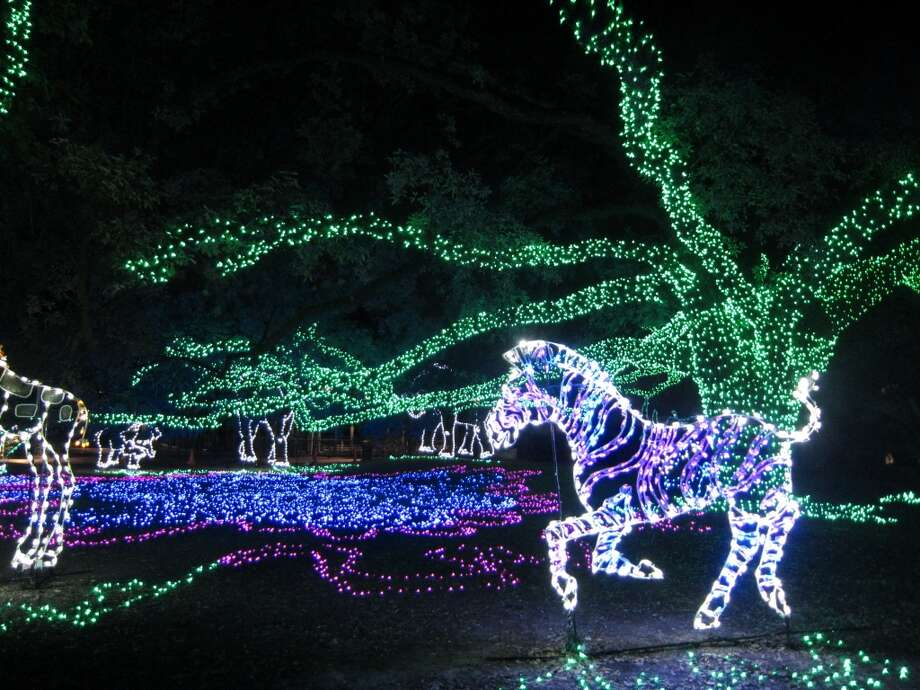 Zoo Lights at the Houston Zoo Photo: Syd Kearney, Houston Chronicle