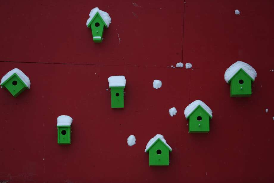 Snow covers bird houses at Cal Anderson Park in Capitol Hill. Photo: JOSHUA TRUJILLO, SEATTLEPI.COM STAFF