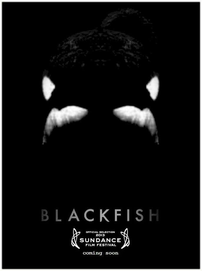 BLACKFISH - Scary. Threatening. Stark. It's killer (whale).
