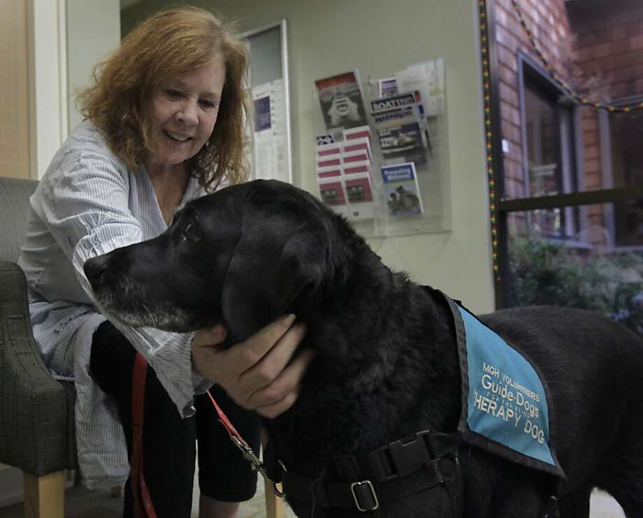 Patient Beth Connelly pets therapy dog April in the waiting room before Connelly's appointment at the Marin Cancer Institute in Larkspur. Photo: Paul Chinn, The Chronicle