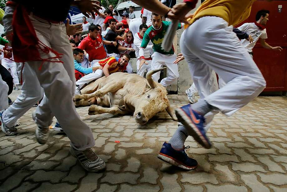 Revellers run in to the bullring while a Fuente Ymbro's fighting bull lays on the ground during the eighth day of the San Fermin Running Of The Bulls festival on July 13, 2013 in Pamplona, Spain. The annual Fiesta de San Fermin, made famous by the 1926 novel of US writer Ernest Hemmingway 'The Sun Also Rises', involves the running of the bulls through the historic heart of Pamplona, this year for nine days from July 6-14. Photo: Pablo Blazquez Dominguez, Getty Images