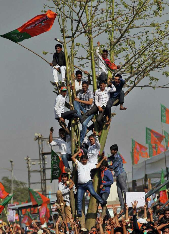 Supporters of India's main opposition Bharatiya Janata Party (BJP)'s leader Narendra Modi sit on a tree as they listen to his speech during a rally in Mumbai India, Sunday, Dec. 22, 2013. The BJP had earlier announced Modi as their prime ministerial candidate if they win the 2014 general elections. Photo: Rafiq Maqbool, AP / AP2013