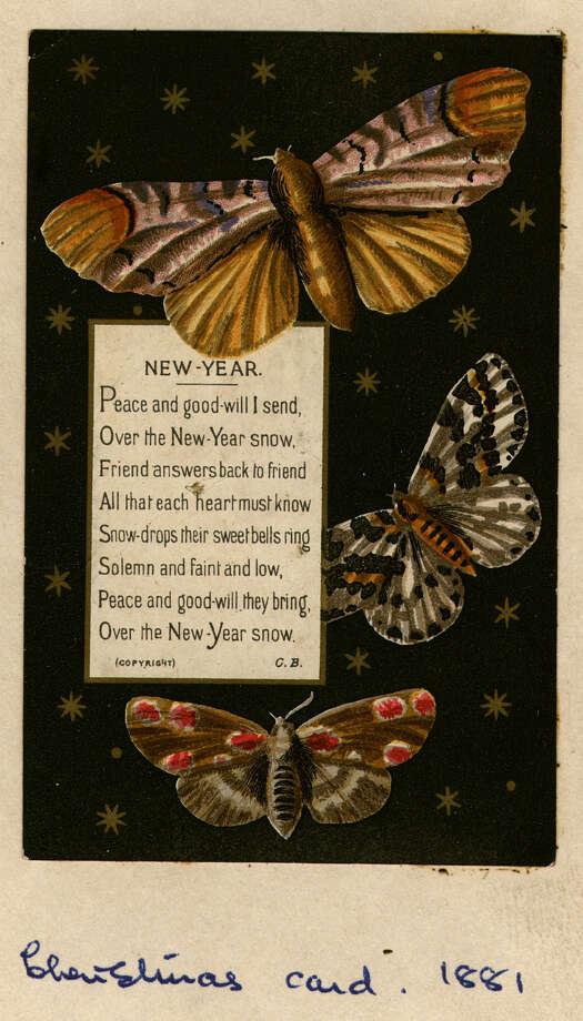 A New Year's greetings card from about 1881 features moths and stars. Photo: Hulton Archive, Getty Images / Hulton Archive