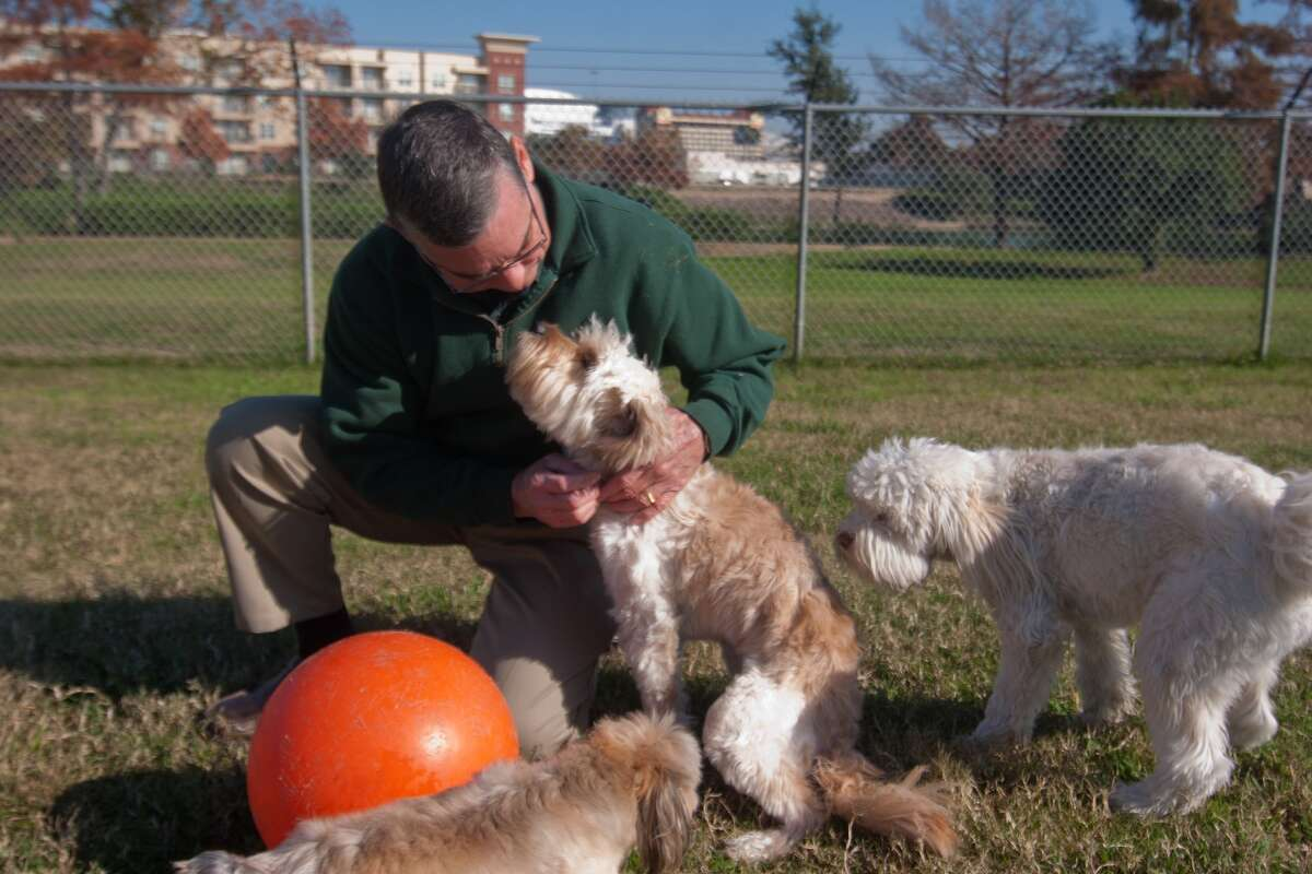 Rover Oaks Pet Resort president Steve Smith greets friends in the business' daycare program at 2550 West Bellfort Ave.