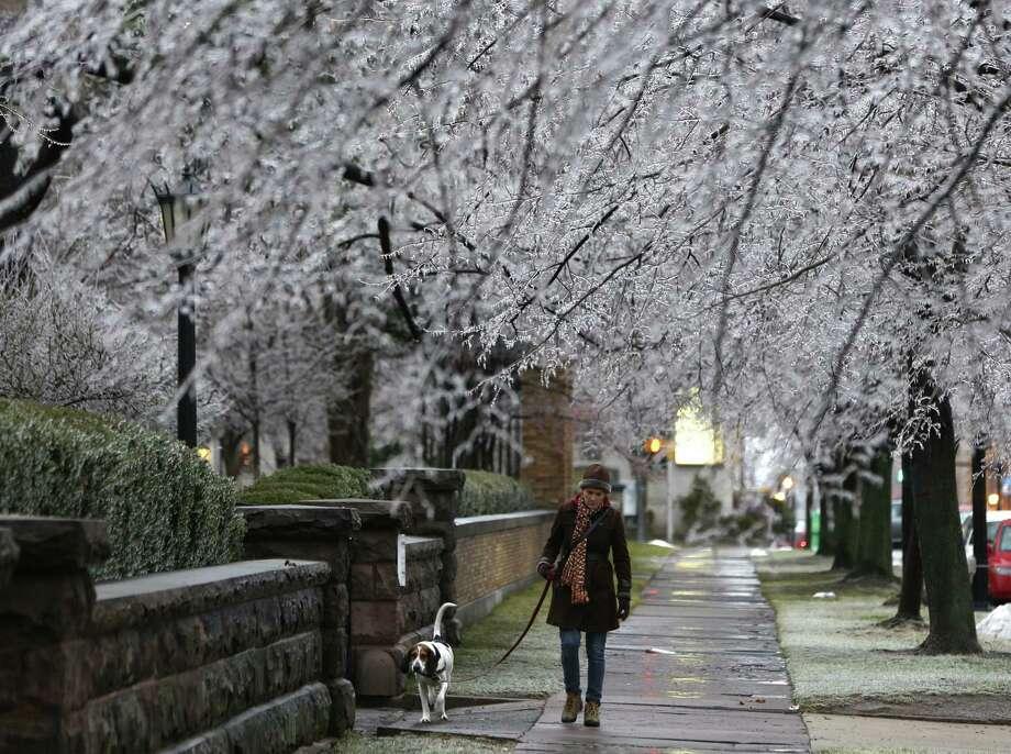 Heather Griffin and her dog Sal walk beneath ice-covered trees in Buffalo, N.Y. More than 390,000 homes and businesses were without power Monday in upstate New York, northern New England and Michigan. Photo: Mike Groll / Associated Press / AP