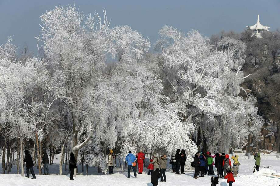The frosted trees were almost as breathtaking as the sculptures. Photo: Hong Wu, Getty Images / 2013 Hong Wu