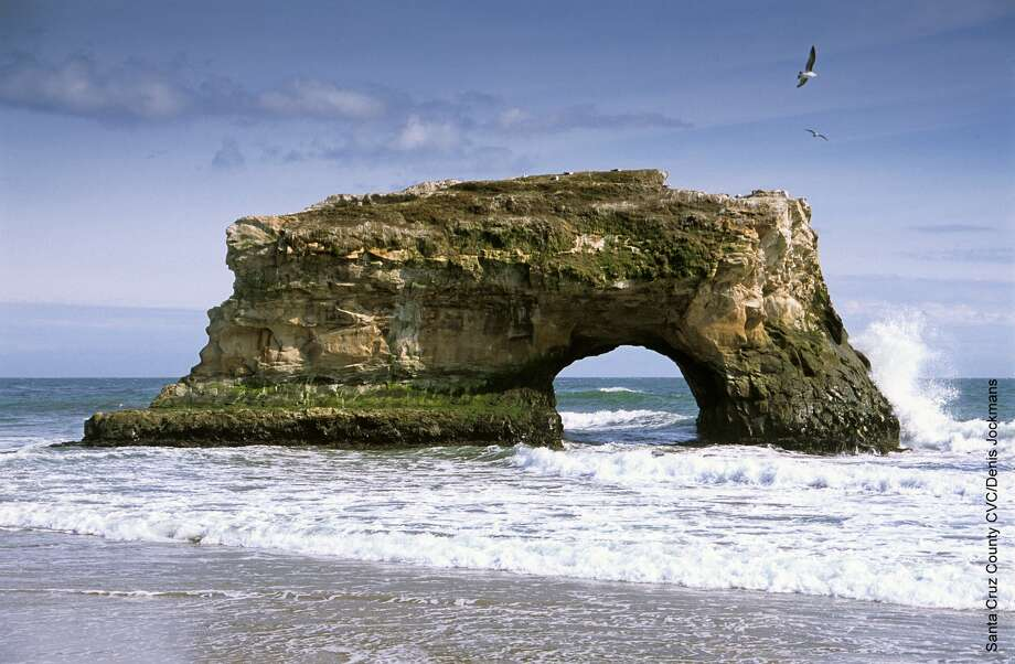 An easy half-mile stroll on the boardwalk of Natural Bridges State Parkleads to the Monarch Preserve, exploring the qualities gently sloped, tree-filled arroyo that shelters not only a winter monarch colony that cluster in the trees but park visitors as well as abundant other wildlife. 2 p.m. at the visitor center. (831) 423-4609. Photo: Denis Jockmans, SCCVC
