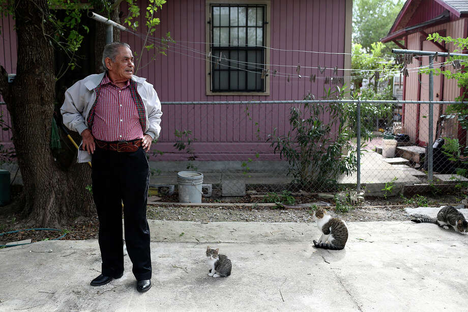 Retired jockey Herbie Hinojosa feeds several cats that congregate at his home in Brownsville on Wednesday, Nov. 13, 2013. Photo: Lisa Krantz, San Antonio Express-News / San Antonio Express-News