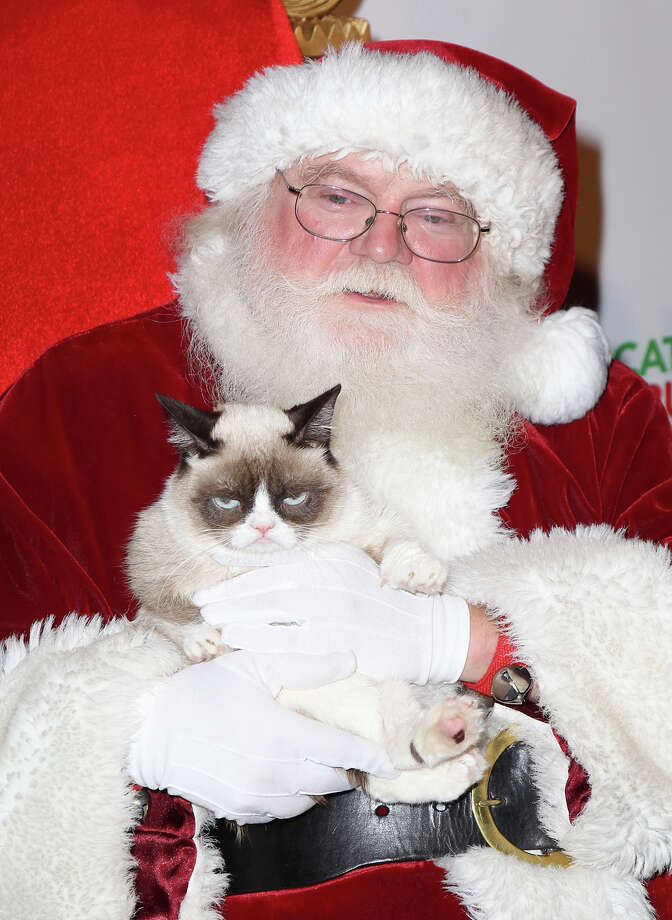 Santa with Grumpy Cat at the Internet Cat Super Group holiday unveiling event at Capitol Records Tower in Los Angeles on Dec. 10, 2013. Photo: David Livingston, Getty Images / 2013 David Livingston